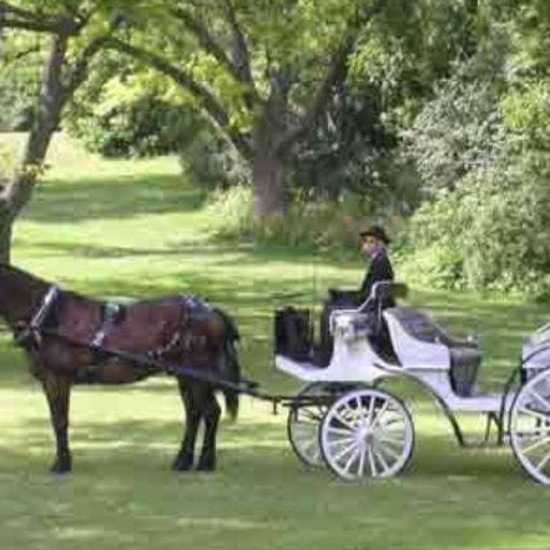 The Enchanted Carriage